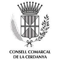197x197consell